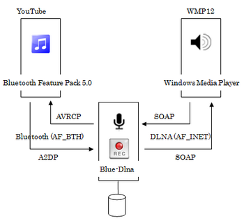 Blue-Dlna_sample_01.png